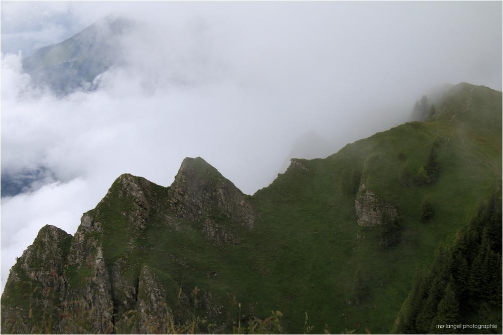 La montagne dans la brume