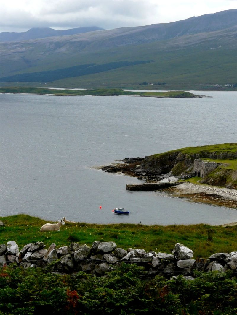 the sheep, the boat and the hills...