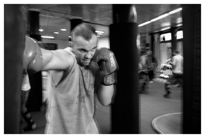 In the Fight Club II