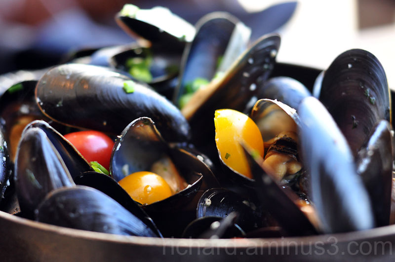 Mussels from the Pru