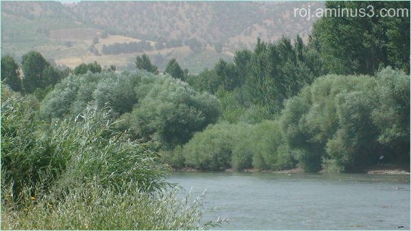 Kelwe river in piranshar