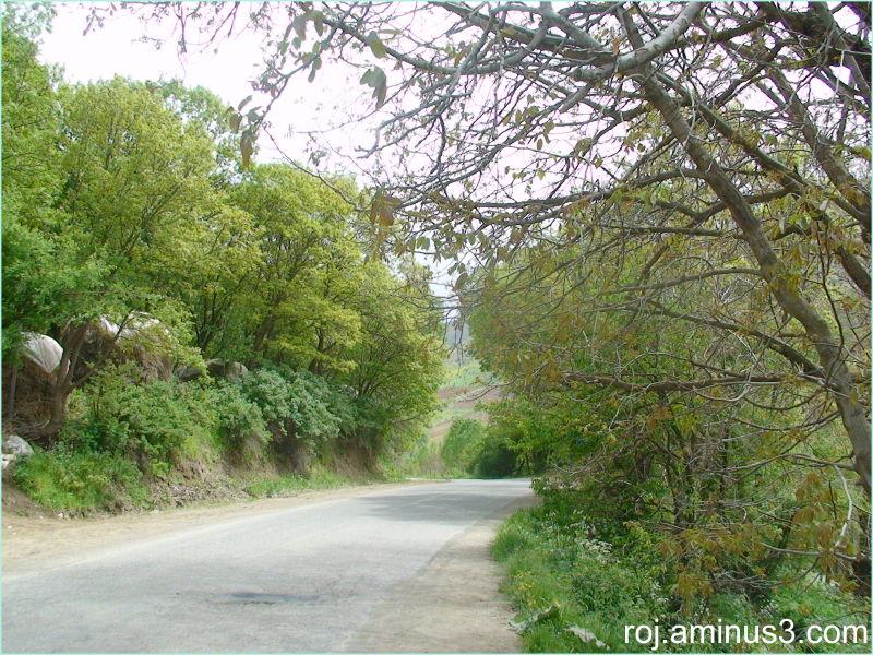 serdesht/bewran village