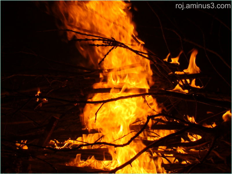 Newroz's fire II