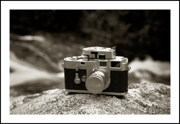 Leica M3 at Cloghleagh Wicklow