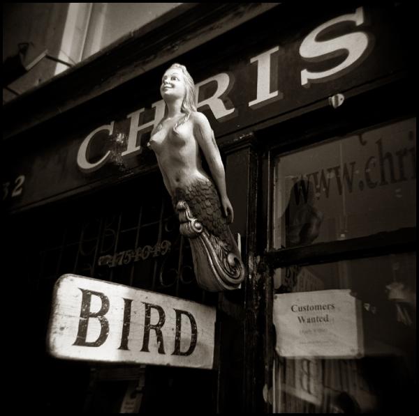 Christy Bird Dublin