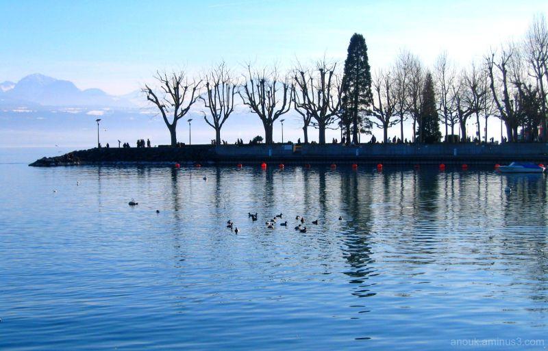Le lac Léman une fin d'après-midi de février