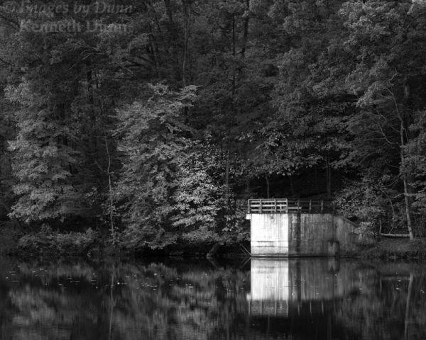 Shawnee State Forest, Turkey Creek Lake