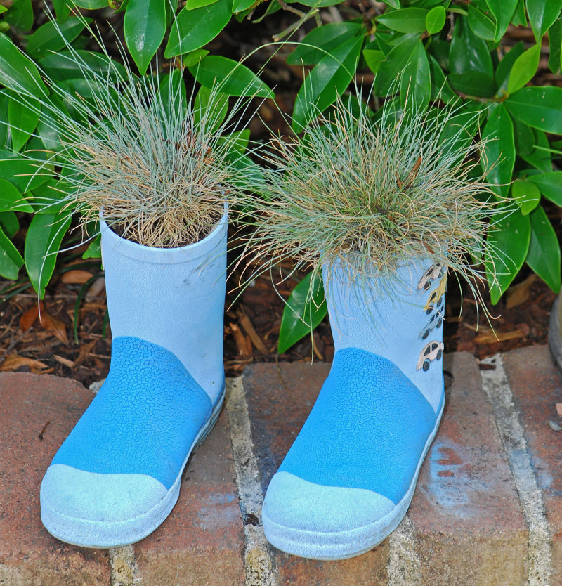 grass in boots
