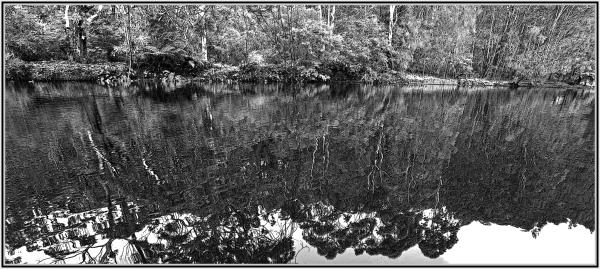 Lane Cove River Sydney
