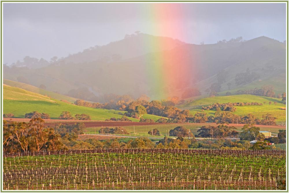 Rainbow in Barossa Valley