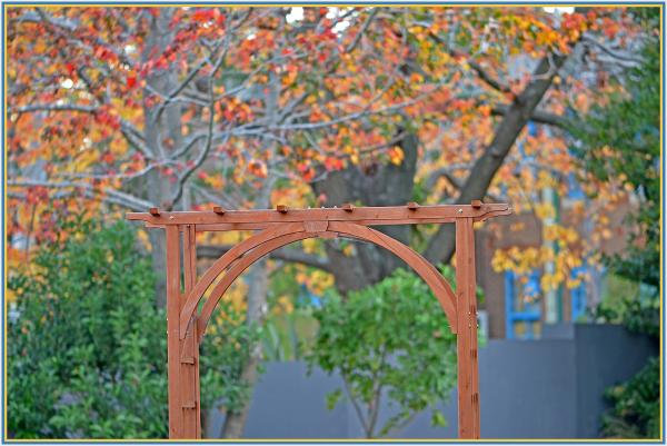 A gate to Autumn