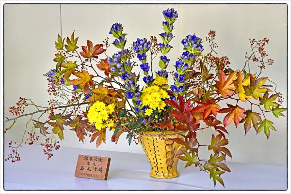 flower display in Tokyo