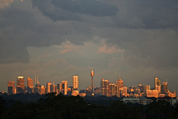 Sydney sunset view