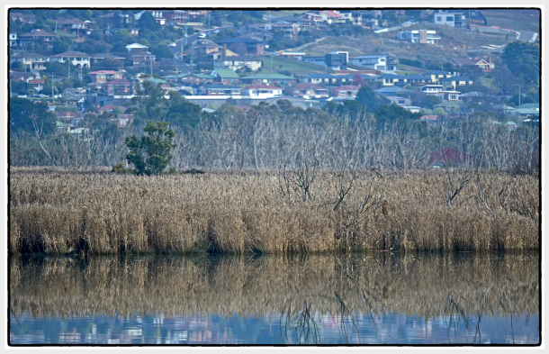 Tamar River Launceston Tasmania