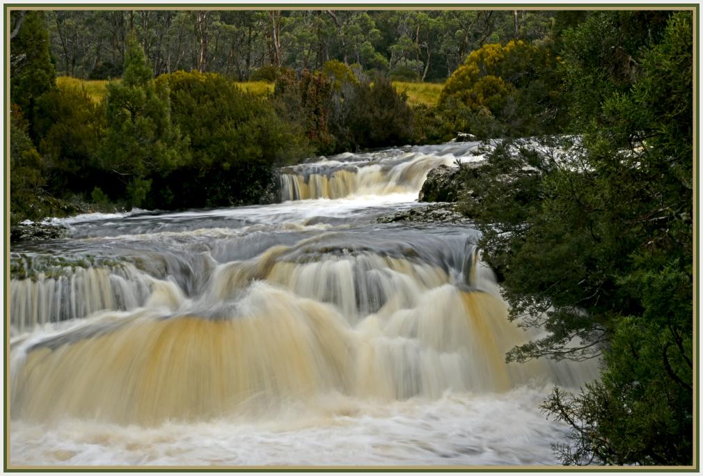 Running creek in Cradle Mountains Tasmania