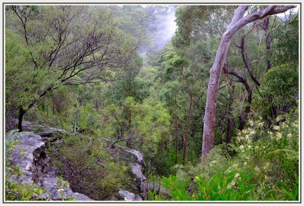 Raining landscape