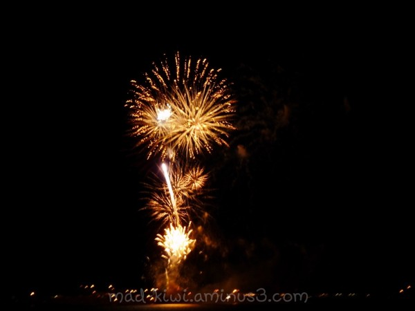 New Years 2009 Fireworks