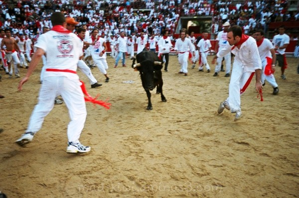 Running aways from the bulls