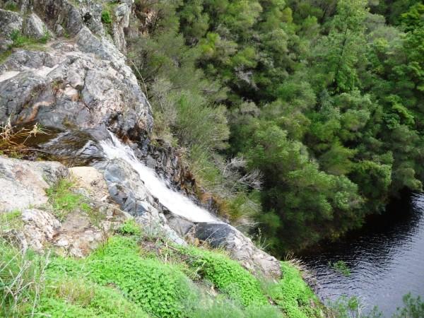 Waterfall Gully Waterfall