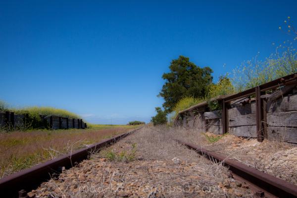 Tracks POV I
