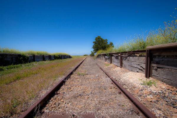 Tracks POV II