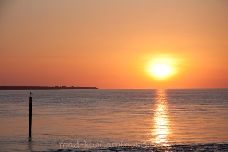 Sunset Cruise III
