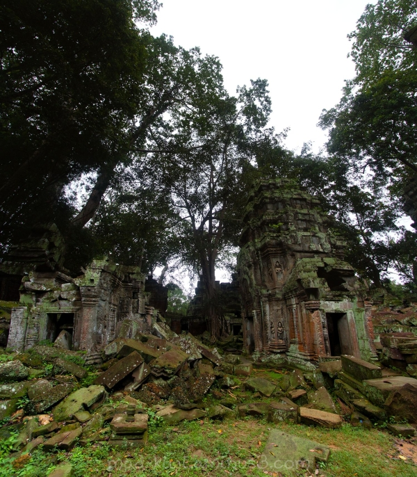 Temples VIII