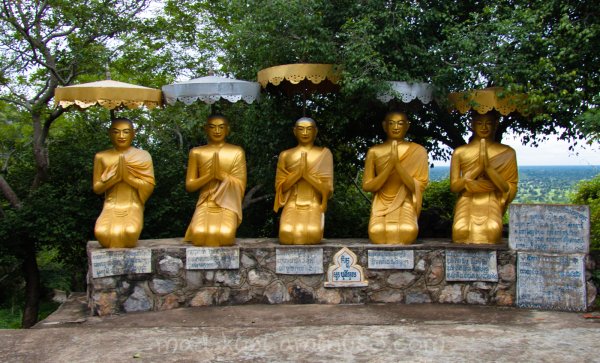 Gold Buddha's