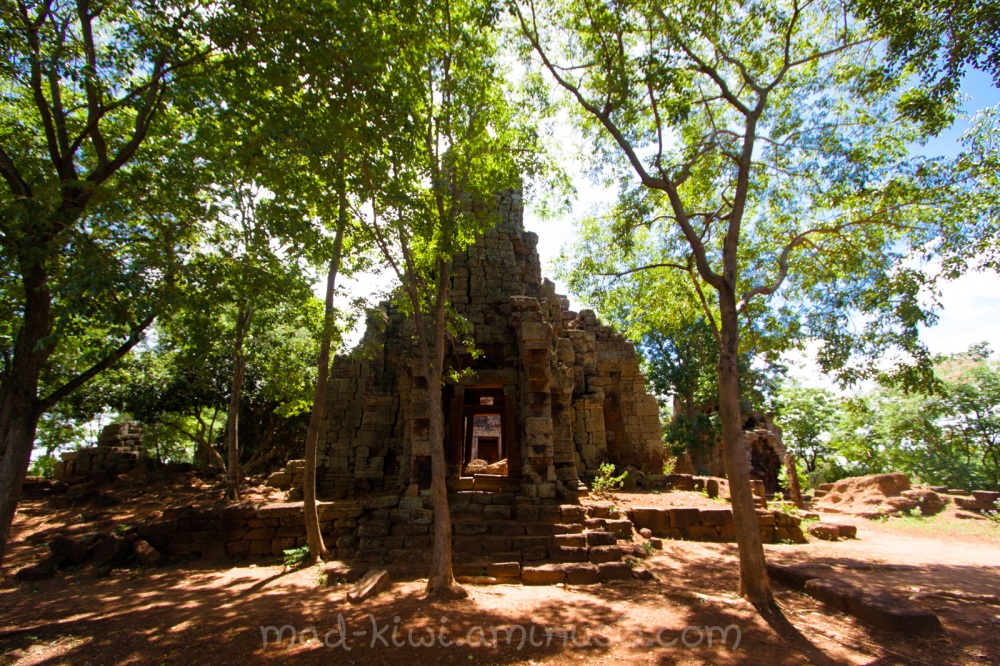 Temples XXIV