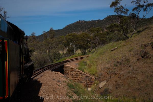Train Trip II
