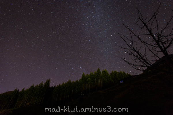 Queenstown Night Sky