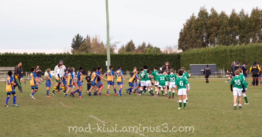 Rugby VII