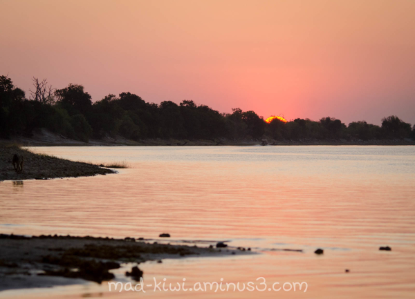 Sunset over the Chobe River