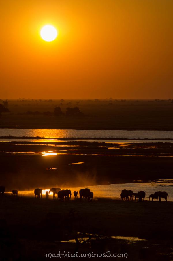 Botswana Sunset I