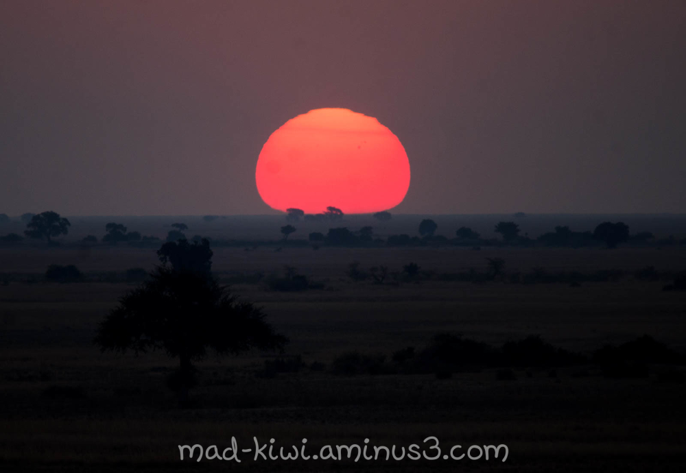 Botswana Sunset IV
