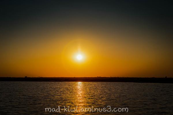 Botswana Sunset V