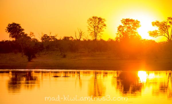 Botswana Sunset XII