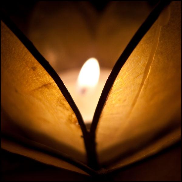 Love light