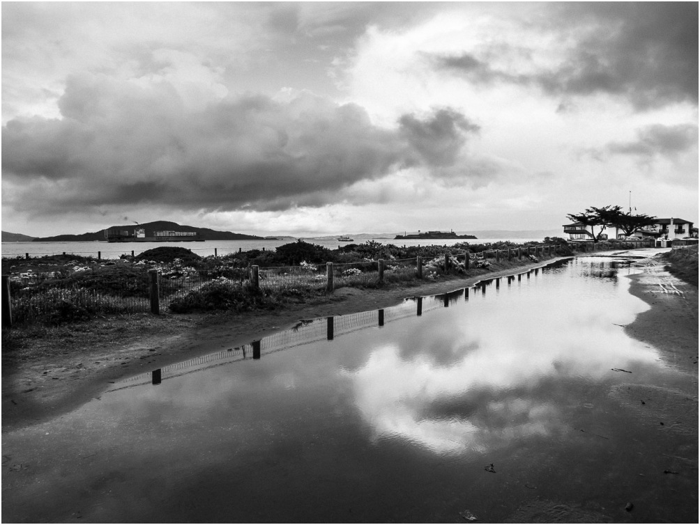 Crissy Field after the Rain