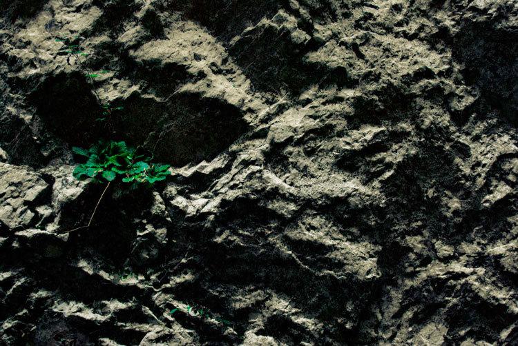 arrelant en pedra