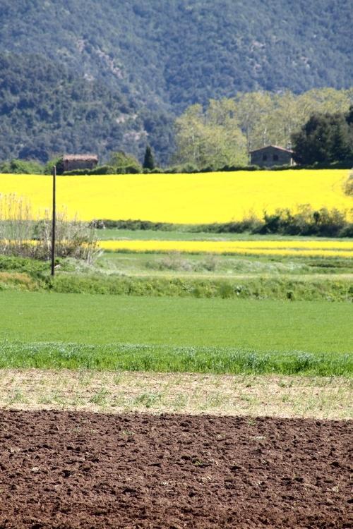 Los colores de la tierra en Olot