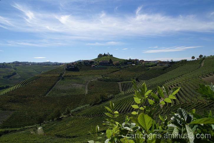 Barbaresco Montestefano wine rural landscape