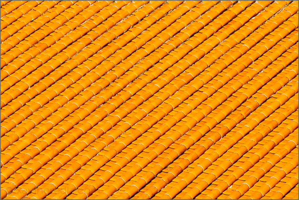 Teules taronges // Orange tiles
