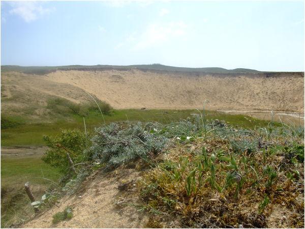 Dune du Magouër à Plouhinec (Bretagne)