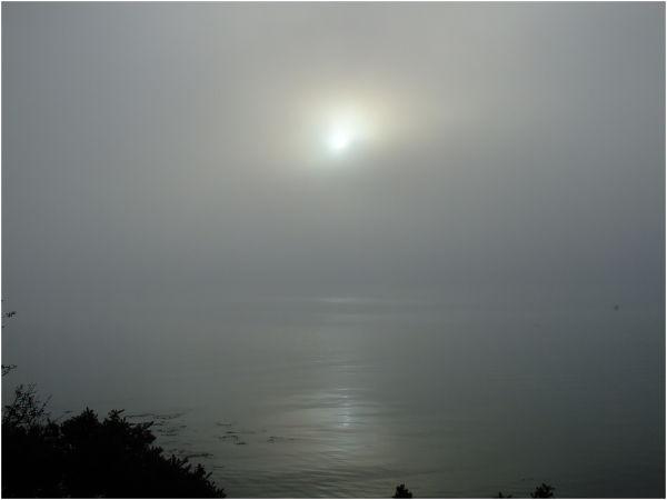 Brouillard sur la ria d'Etel à Plouhinec