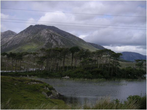 Conemara - Ireland