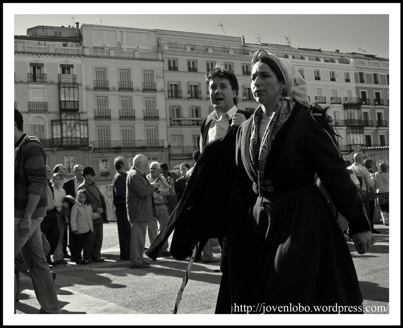 Trashumancia dama Madrid