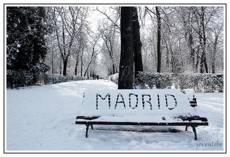 MADRID-NIEVE-RETIRO