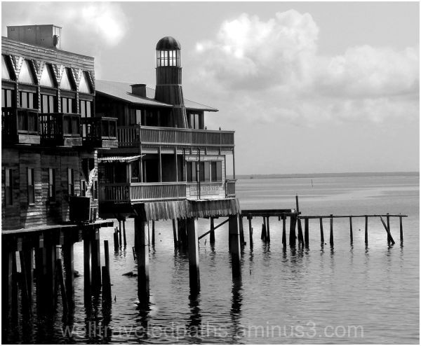 Black and white image of Cedar Key dock
