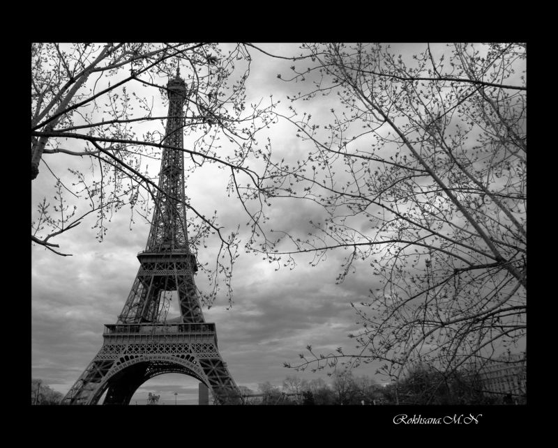 Parisian Dream...